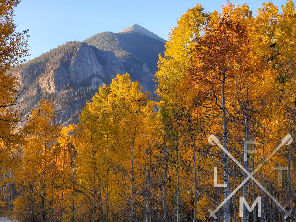 The Peepers stage of the Hiking Seasons as depicted by golden leaves in front of a mountain
