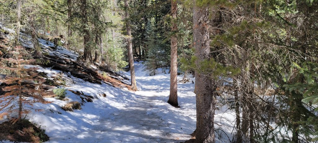 A snow covered trail on Mason Creek.  The trail changed drastically when the shade of the trees blocked the sun.