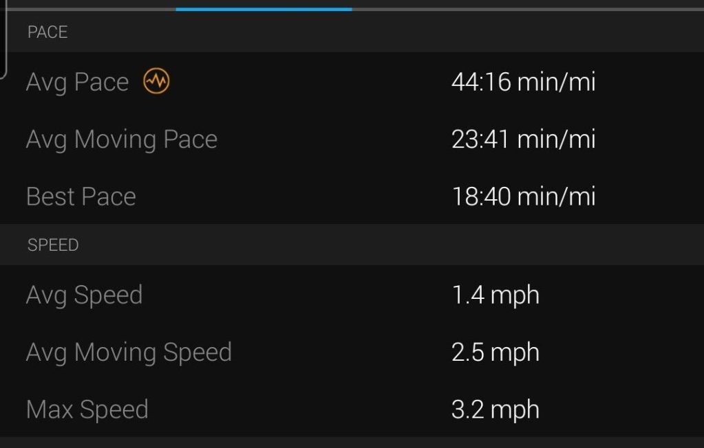 My average pace for the Mushroom rock trail was 44 minutes a mile which is pretty slow while I dealt with the elevation.